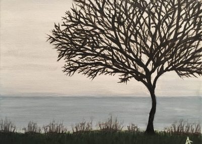 Lonely Tree - Fog