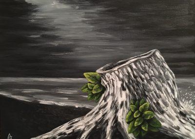 Tree Stump - a new beginning